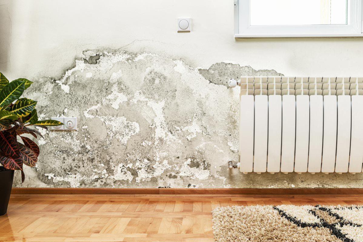 Umidità in casa: ristrutturare spendendo poco